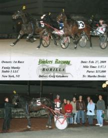 Thoroughbred Horse Racing Partnerships