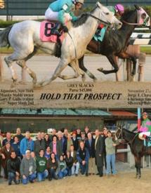 Horse Partnerships