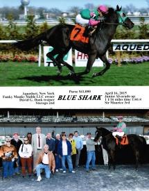 BLUE-SHARK-AQUEDUCT-4-16-15